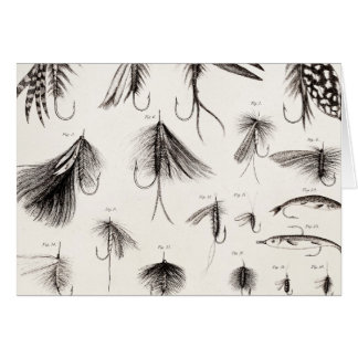 Vintage 1800s Angling Fly Fishing Flies Old Hooks Greeting Card