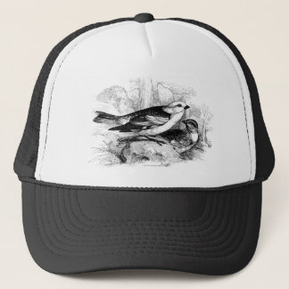 Vintage 1800s Birds Snow Bunting Bird Illustration Trucker Hat