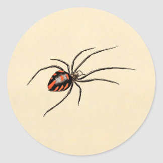 Vintage 1800s Black Red Spider Template Spiders Classic Round Sticker