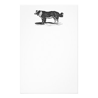 Vintage 1800s Border Collie Dog Illustration Stationery