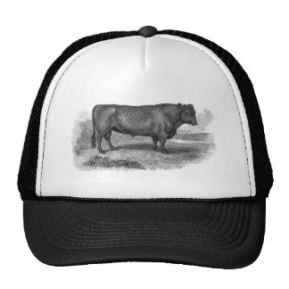 Vintage 1800s Bull Illustration Retro Cow Bulls Cap