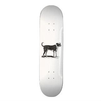 Vintage 1800s Bulldog Dog Illustration - Dogs Skate Board