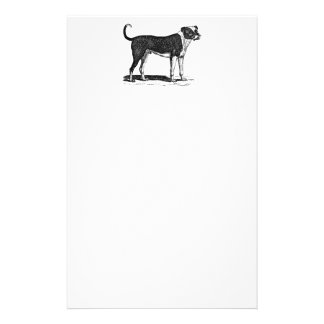 Vintage 1800s Bulldog Dog Illustration - Dogs Stationery