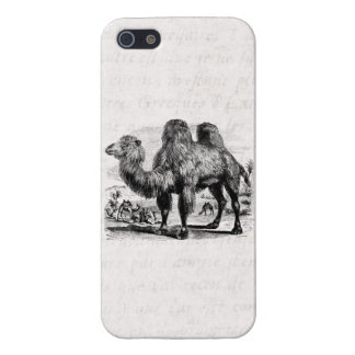 Vintage 1800s Camel -  Egyptian Camels Template iPhone 5/5S Cover