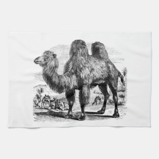 Vintage 1800s Camel -  Egyptian Camels Template Tea Towel