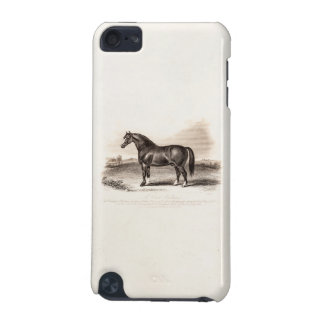 Vintage 1800s Cart Stallion Horse Illustration iPod Touch (5th Generation) Case