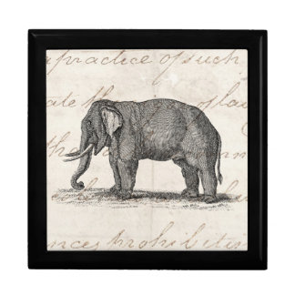 Vintage 1800s Elephant Illustration - Elephants Gift Box