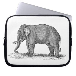 Vintage 1800s Elephant Illustration - Elephants Laptop Sleeve