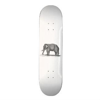 Vintage 1800s Elephant Illustration - Elephants Skate Boards