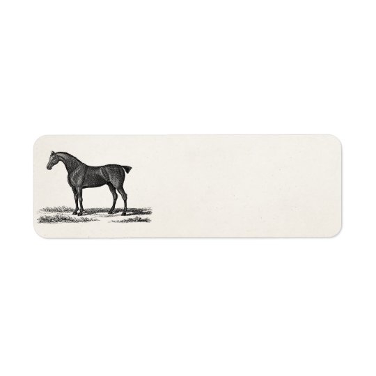Vintage 1800s English Hunter Horse Hunting Horses Return Address Label