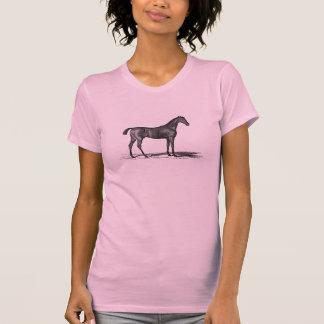 Vintage 1800s English Race Horse - Horses Tshirt