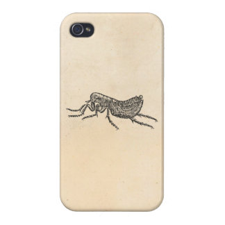 Vintage 1800s Flea Illustration - Fleas Template iPhone 4/4S Case