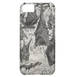 Vintage 1800s Flying Fox Bat Retro Template Bats iPhone 5C Case