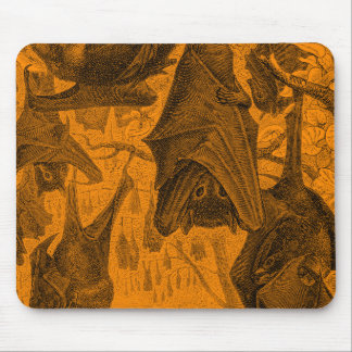 Vintage 1800s Flying Fox Bat Retro Template Orange Mouse Pad