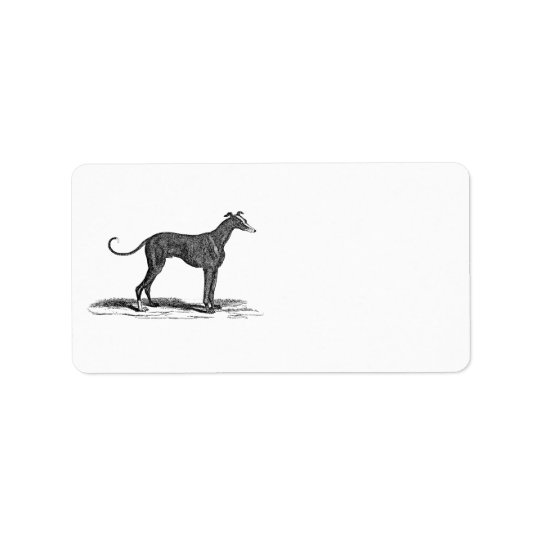 Vintage 1800s Greyhound Dog Illustration - Dogs Address Label