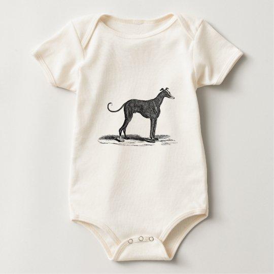 Vintage 1800s Greyhound Dog Illustration - Dogs Baby