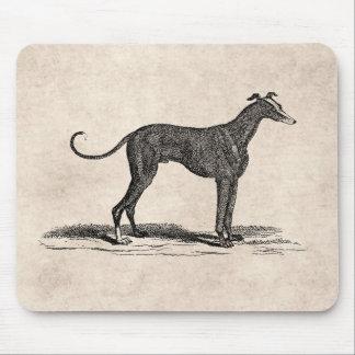 Vintage 1800s Greyhound Dog Illustration - Dogs Mouse Mat