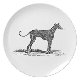 Vintage 1800s Greyhound Dog Illustration - Dogs Plate