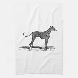 Vintage 1800s Greyhound Dog Illustration - Dogs Tea Towel