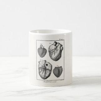 Vintage 1800s Heart Retro Cardiac Anatomy Hearts Basic White Mug