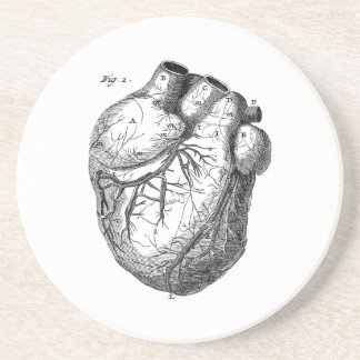 Vintage 1800s Heart Retro Cardiac Anatomy Hearts Coasters