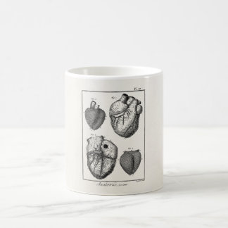 Vintage 1800s Heart Retro Cardiac Anatomy Hearts Coffee Mug