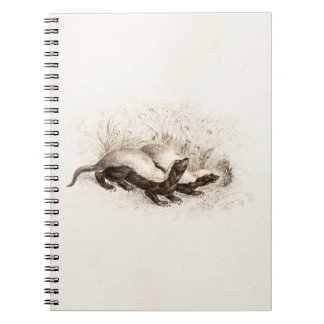 Vintage 1800s Honey Badger Bee Hive Template Retro Spiral Notebook