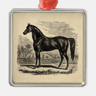 Vintage 1800s Horse - Morgan Equestrian Template Christmas Ornament