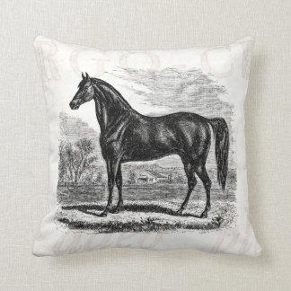 Vintage 1800s Horse - Morgan Equestrian Template Cushion