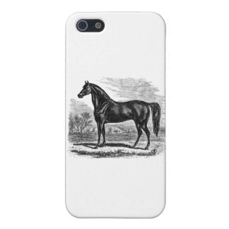 Vintage 1800s Horse - Morgan Equestrian Template iPhone 5 Cases