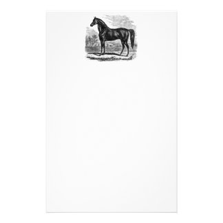 Vintage 1800s Horse - Morgan Equestrian Template Stationery