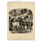 Vintage 1800s Horses Arabian Cart Cossack Horse Card