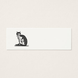 Vintage 1800s House Cat Illustration - Cats Mini Business Card