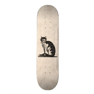 Vintage 1800s House Cat Illustration - Cats Skateboard Decks