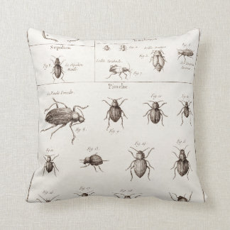 Vintage 1800s Insects Bugs Beetles Illustration Cushion
