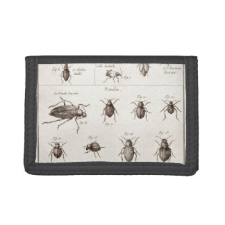 Vintage 1800s Insects Bugs Beetles Illustration Tri-fold Wallets