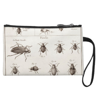 Vintage 1800s Insects Bugs Beetles Illustration Wristlet