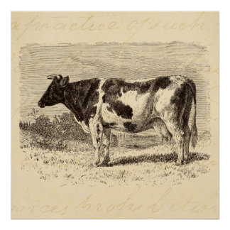 Vintage 1800s Large Dutch Cow Retro Cows Yellow Poster