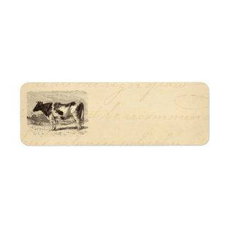 Vintage 1800s Large Dutch Cow Retro Cows Yellow Return Address Label