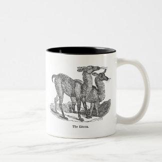 Vintage 1800s Llama Illustration Llamas Template Two-Tone Mug