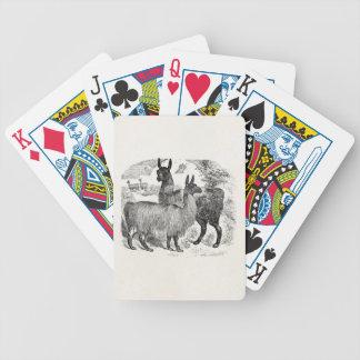 Vintage 1800s Llama Retro Llamas Alpaca Template Bicycle Playing Cards
