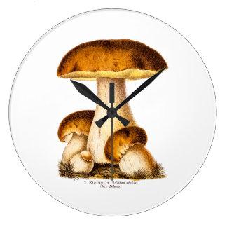 Vintage 1800s Mushroom Edible Mushrooms Template Large Clock