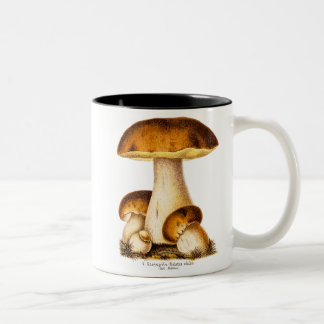 Vintage 1800s Mushroom Edible Mushrooms Template Two-Tone Coffee Mug