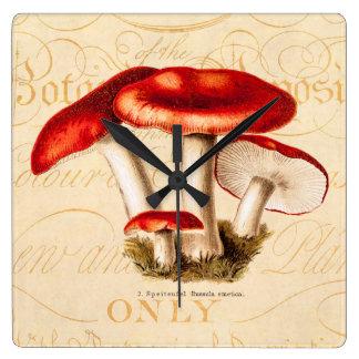 vintage 1800s Mushroom Red Mushrooms Template Square Wall Clock