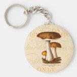Vintage 1800s Mushroom Scaber Brown Mushrooms Keychains