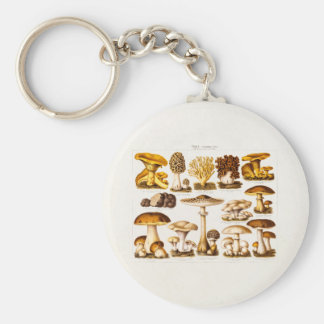 Vintage 1800s Mushroom Variety  Mushrooms Template Key Ring