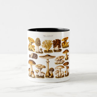Vintage 1800s Mushroom Variety  Mushrooms Template Two-Tone Coffee Mug