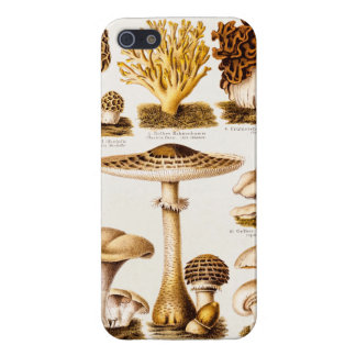 Vintage 1800s Mushroom Variety Template Case For iPhone 5/5S