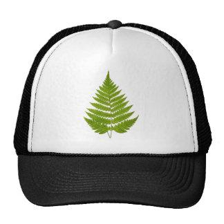 Vintage 1800s Olive Green Fern Leaf Template Cap
