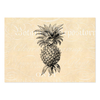 Vintage 1800s Pineapple Illustration Pineapples Business Cards